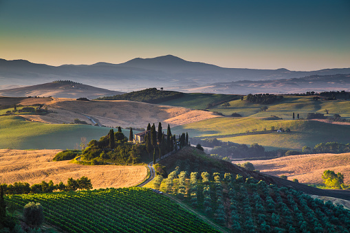 Scenic Tuscany landscape at sunrise, Val d'Orcia, Italy 488356904