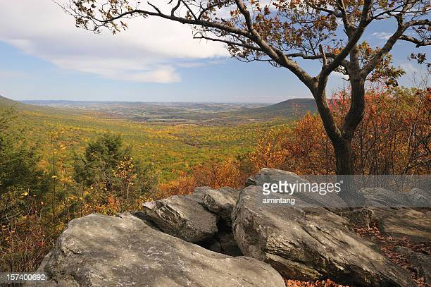 Scenic View at Hawk Mountain