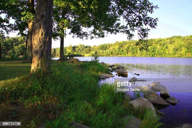 scenic view at the lake shore, finley lake state park, wellington, ohio, usa - ohio stock photos and pictures