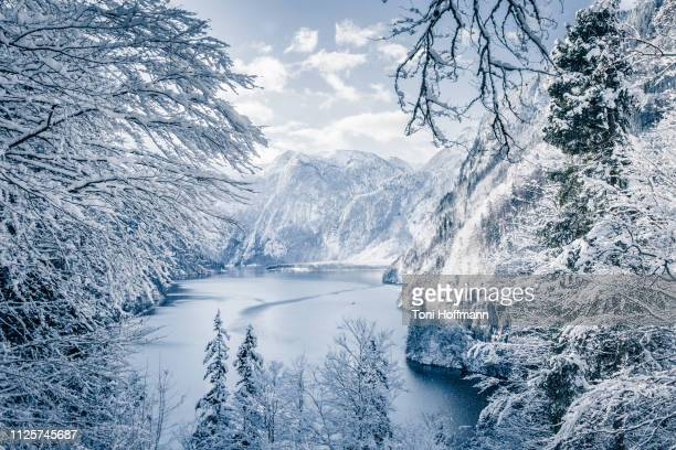 scenic view at the rabenwand at königssee - berchtesgaden stock pictures, royalty-free photos & images