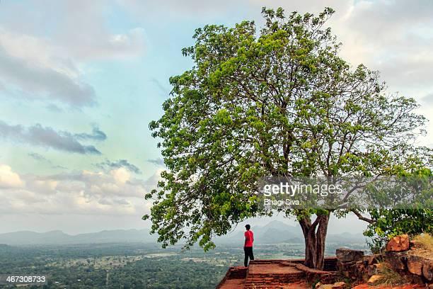Scenic view from Sigiriya Fortress