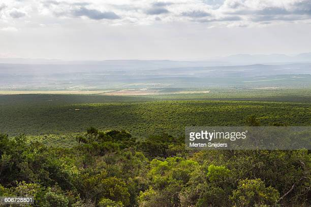 Scenic view from Zuurkop lookout point
