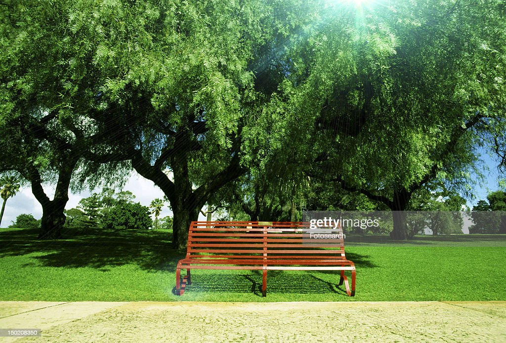 Scenic View Of A Bench In A Park Stock Photo Getty Images