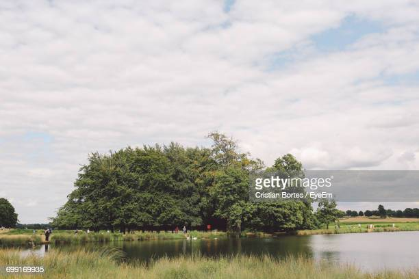 scenic view of adams pond by trees against cloudy sky - bortes stock pictures, royalty-free photos & images