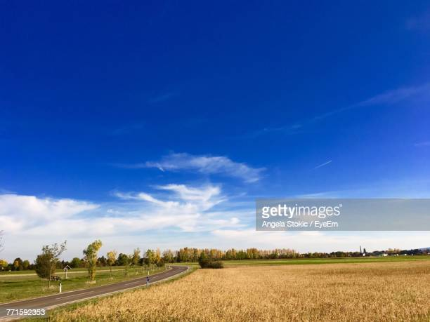 Scenic View Of Agricultural Field Against Blue Sky