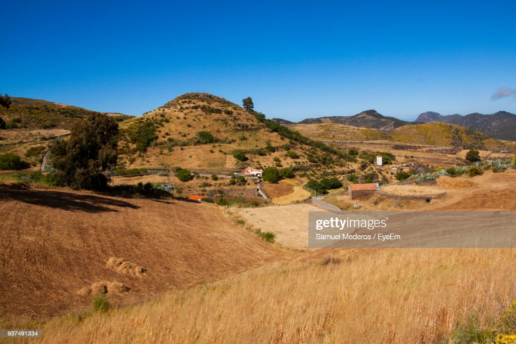 Scenic View Of Agricultural Field Against Clear Blue Sky : Foto de stock