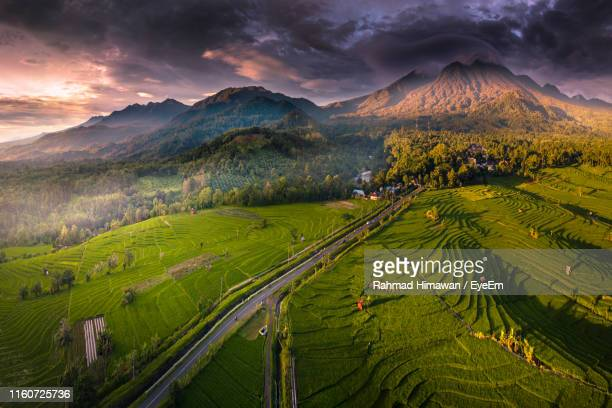scenic view of agricultural field against sky during sunset - rahmad himawan stock photos and pictures