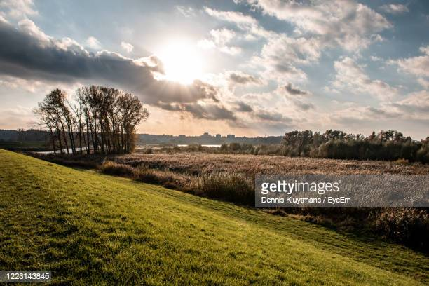 scenic view of agricultural field against sky during sunset - gelderland stock pictures, royalty-free photos & images