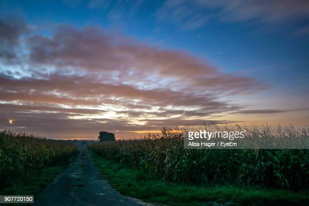 scenic view of agricultural field against sky during sunset - dämmerung stock-fotos und bilder