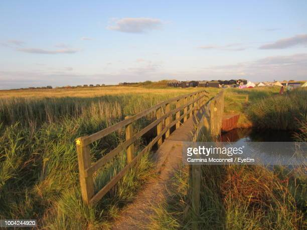 scenic view of agricultural field against sky - east anglia stock pictures, royalty-free photos & images