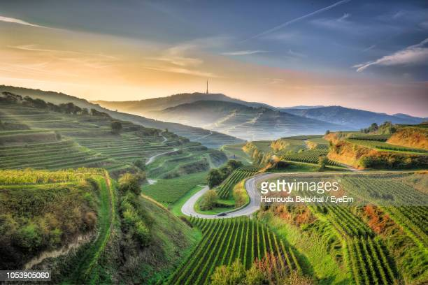 scenic view of agricultural field against sky - フライブルク・イム・ブライスガウ ストックフォトと画像