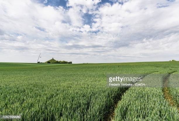 scenic view of agricultural field against sky - waterloo belgium stock pictures, royalty-free photos & images
