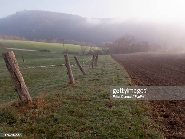 scenic view of agricultural field against sky - 休耕田 ストックフォトと画像