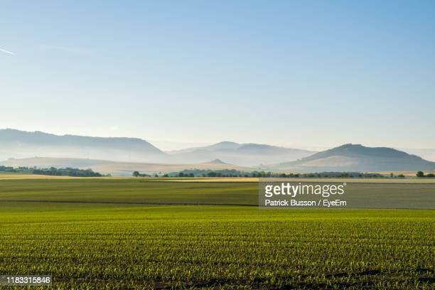 scenic view of agricultural field against sky - auvergne rhône alpes stock pictures, royalty-free photos & images