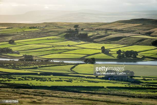 scenic view of agricultural field against sky - barnard castle stock pictures, royalty-free photos & images