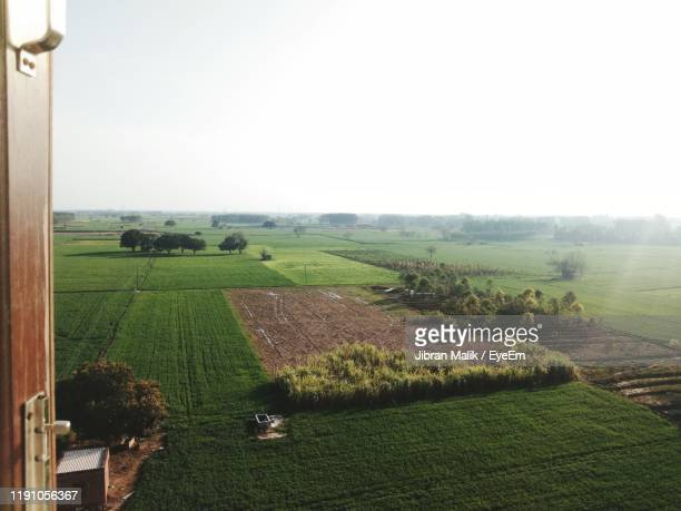 scenic view of agricultural field against sky - punjab - india stock pictures, royalty-free photos & images