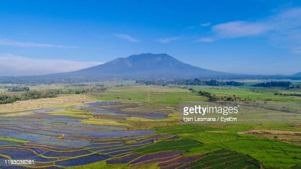 scenic view of agricultural field against sky - west sumatra province stock pictures, royalty-free photos & images