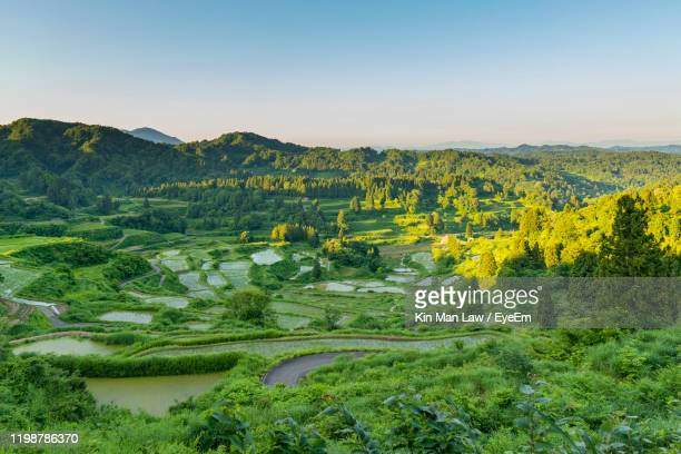 scenic view of agricultural field against sky - satoyama scenery stock pictures, royalty-free photos & images