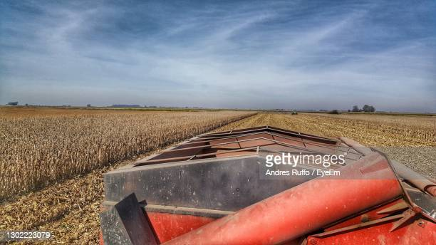 scenic view of agricultural field against sky - andres ruffo stockfoto's en -beelden