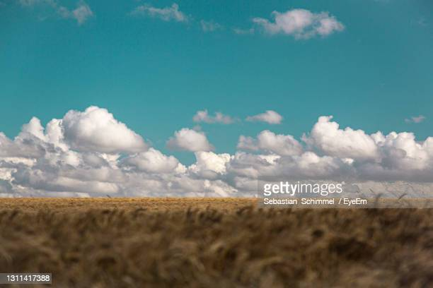 scenic view of agricultural field against sky - bogense photos et images de collection