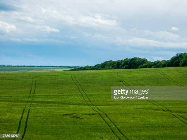 scenic view of agricultural field against sky - igor golovniov stock pictures, royalty-free photos & images