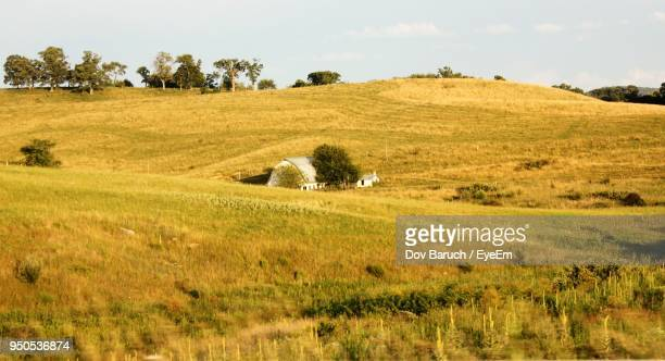scenic view of agricultural field against sky - barulho stock pictures, royalty-free photos & images