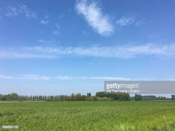 scenic view of agricultural field against sky - west flanders stock pictures, royalty-free photos & images