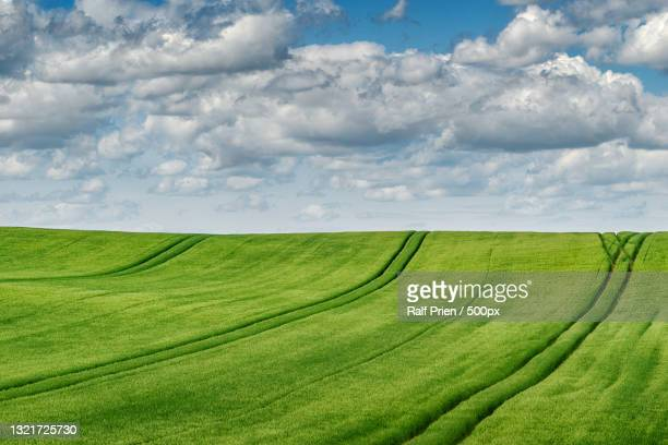 scenic view of agricultural field against sky,neu heinde abzweig,prebberede,germany - neu stock pictures, royalty-free photos & images