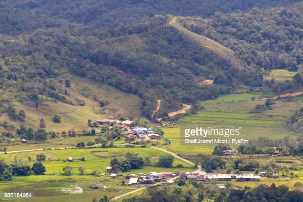 scenic view of agricultural field and houses - shaifulzamri 個照片及圖片檔