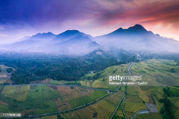 scenic view of agricultural field and mountains against sky - rahmad himawan stock photos and pictures