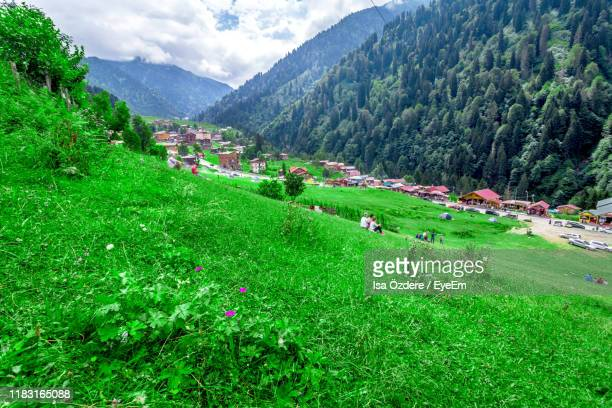 scenic view of agricultural field and mountains - trabzon stock pictures, royalty-free photos & images