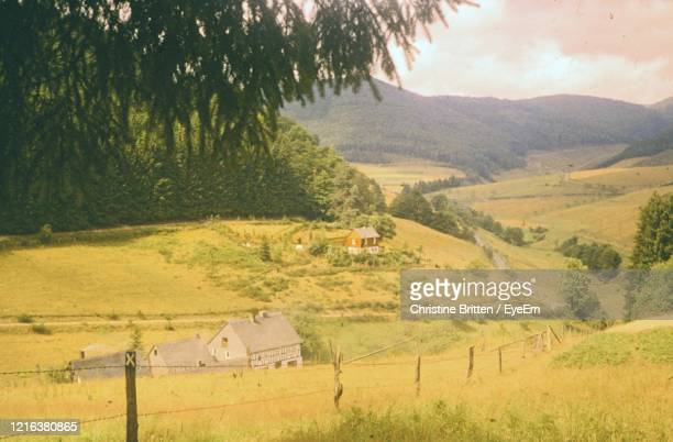 scenic view of agricultural field and mountains - 1950 1959 stock-fotos und bilder