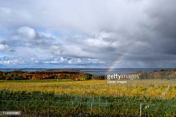 scenic view of agricultural field by sea against cloudy sky - traverse city fotografías e imágenes de stock