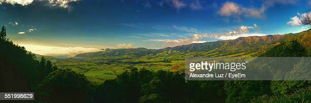 Scenic View Of Agricultural Fields