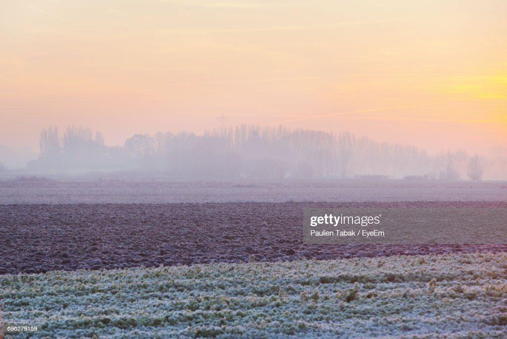 Scenic View Of Agricultural Landscape Against Sky During Sunset : Stockfoto