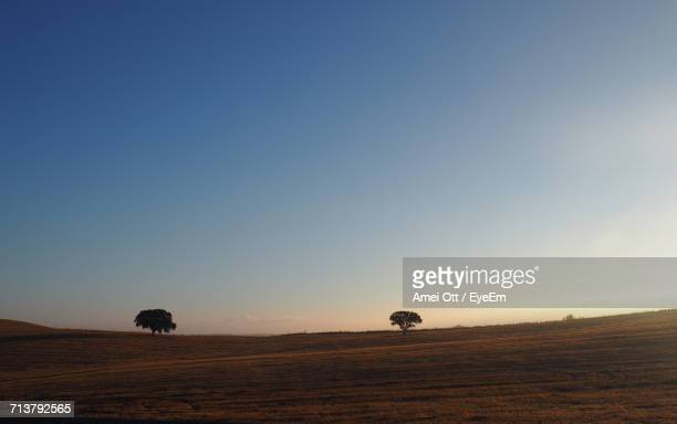 scenic view of agricultural landscape against sky during sunset - cork tree stock photos and pictures