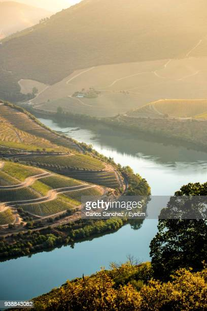 Scenic View Of Agricultural Landscape And River