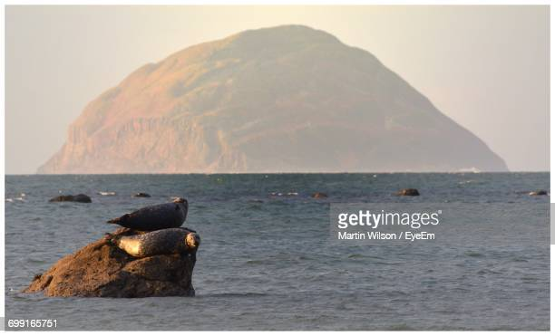 Scenic View Of Ailsa Craig Island