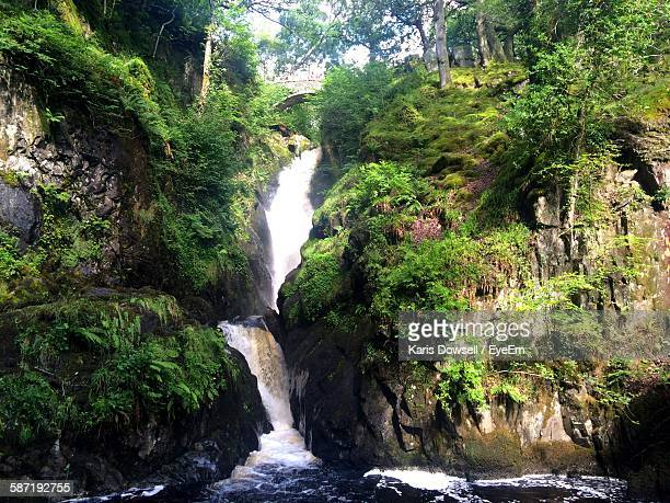 Scenic View Of Aira Force