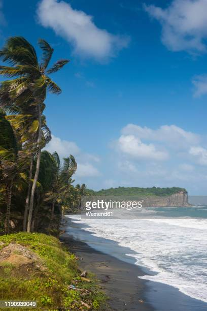 scenic view of antoine bay in north of grenada, caribbean - west indies stock pictures, royalty-free photos & images