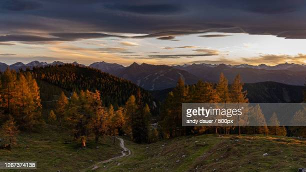 scenic view of autumn forest at sunset, schladming, austria - andy dauer stock pictures, royalty-free photos & images