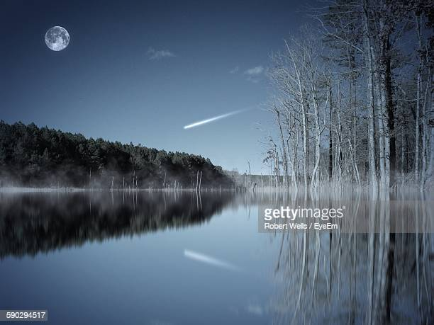 Scenic View Of Bare Trees Reflecting In Lake Against Moon