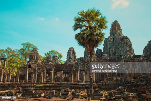 scenic view of bayon temple in angkor thom, cambodia - banyan tree stock photos and pictures