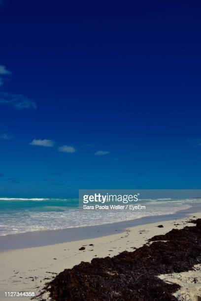 scenic view of beach against blue sky - santa clara cuba stock pictures, royalty-free photos & images