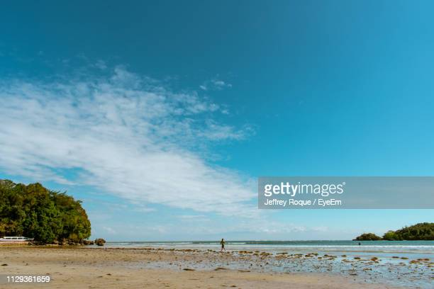 scenic view of beach against blue sky - jeffrey roque stock photos and pictures