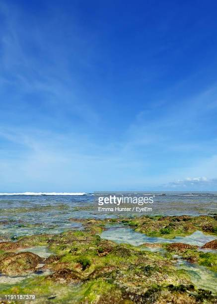 scenic view of beach against blue sky - emma hunter eye em stock photos and pictures
