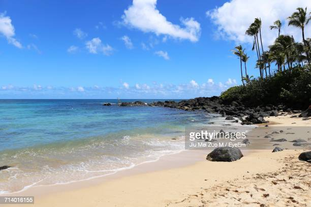scenic view of beach against blue sky - haleiwa stock photos and pictures
