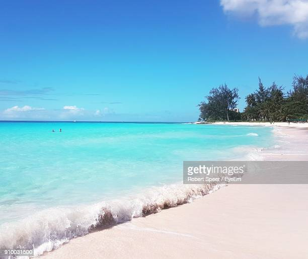 scenic view of beach against blue sky - bridgetown barbados stock photos and pictures