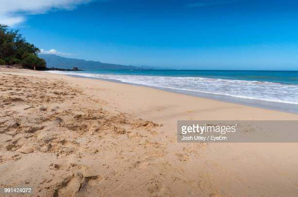 scenic view of beach against blue sky - josh utley stock pictures, royalty-free photos & images