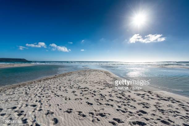 scenic view of beach against blue sky,noordhoek,south africa - wasser imagens e fotografias de stock